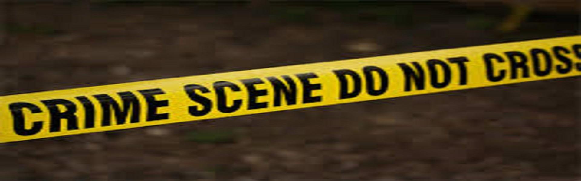 Espansioni di Detective: Crimini a L.A e Scavare a Fondo