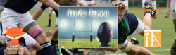 terzotemo_banner