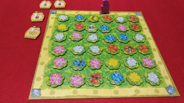 Il Giardino con le Tessere Orchidee piazzate. La posizione del Giardiniere consente di prendere le tessere della quarta fila