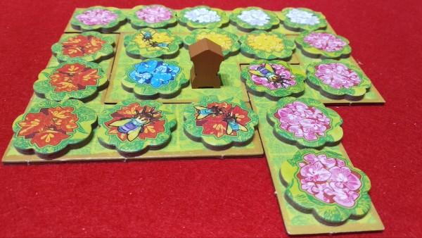 Un Campo di un giocatore. Le api attorno all'arnia daranno punti a fine partita, mentre ogni aiuola di un colore da punti durante il gioco